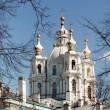 Smolny cathedral in Russia - Stock Photo