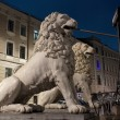 Pedestrian Lion bridge in St. Petersburg, Russia — Stock Photo