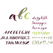 The alphabet in calligraphy — Stock Vector