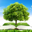 Book with tree on natural background. education concept — Stock Photo #8713889