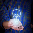 Hand holding bulb. energy concept — Stock Photo