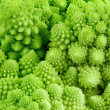 Stock Photo: Romanensco - broccoli - cauliflower enlarged