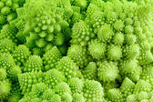 Romanensco - broccoli - cauliflower enlarged — Stock Photo