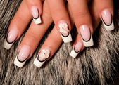 Beautiful nails with Art — Stock Photo