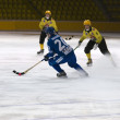 Stock Photo: Bandy match