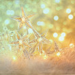Star holiday lights with sparkle background — Stock Photo