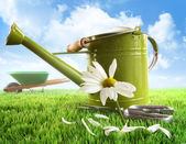 Green watering can with large daisy — Stock Photo