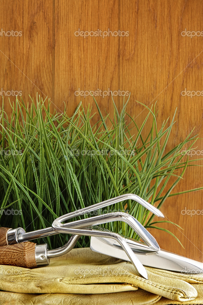 Garden tools with grass on wood background — Stock Photo #8557330