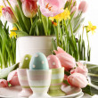 Easter eggs in cups with spring flowers on white — Stockfoto