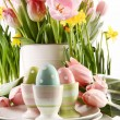 Easter eggs in cups with spring flowers on white — Stock Photo