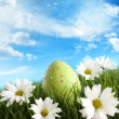 Easter egg in the grass with daisies - Stock Photo