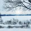 Winter landscape overlooking a lake — Stockfoto