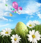 Easter egg in the grass with daisies — Stock Photo