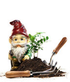 Garden gnome and tools for spring planting — Stock Photo