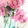 Pink peonies in glass jar — Stock Photo #9990694