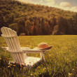 Adirondack chair in a field of tall grass - Stock Photo