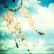 Sea shells wind chime blowing in the wind — Stock Photo