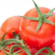 Stock Photo: Background of the tomato with water drops