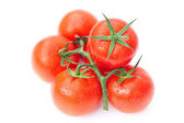 Tomato with water drops isolated on white — Stock Photo