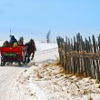 Horse sledge in action in winter landscape — Stock Photo
