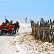 Horse sledge in action in winter landscape - Stock Photo