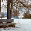 Stockfoto: Isolated wooden bench with trees in winter