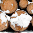 Log stack lumber with snow — Stock Photo #8327844