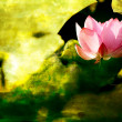 Stock Photo: Beautiful Lotus for background use