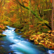 Autumn Color of Oirase River, Japan (Painting style) - Foto Stock
