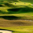 Stock Photo: Golf place with nice green