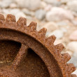 Cogwheel — Stock Photo #8160452