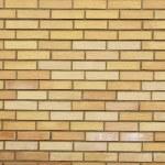 Brick wall — Stock Photo #8160956