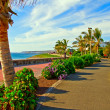 Tropical Beach Promenade - Stock Photo