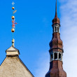 Tallinn's Town Hall spire — Stock Photo