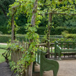 Arbor shading garden benches — Stock Photo