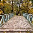Bridge in Autumn Forest — Stock Photo #8163363