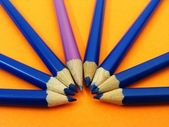 Crescent of pencils — Stock Photo