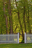 Beyaz çitli Park — Stok fotoğraf