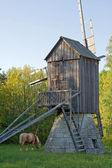 马和旧风车 — 图库照片