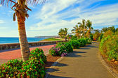 Tropical Beach Promenade — Stock Photo