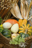 Pumpkins basket — Stock Photo