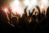 Crowd at the Concert — Stock Photo