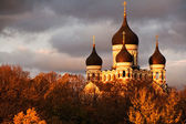 Nevsky Cathedral, Tallinn — Stock Photo
