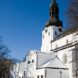 Dome Church in Tallinn — Stock Photo #8521163
