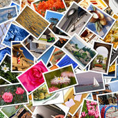 Photographic collage — Stock Photo