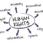 Human rights chart — Stock Vector #8521462
