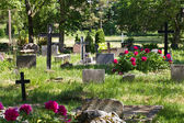 Cemetery — Stock Photo