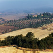 Crete Senesi Landscape — Photo