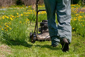 Lawn mowing — Stock Photo