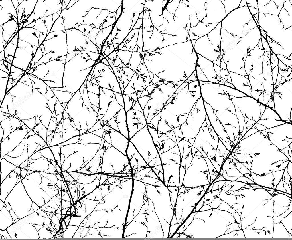 Листва бесшовные текстуры и фоны листьев скачать
